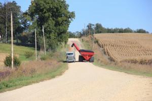corn harvest SBell