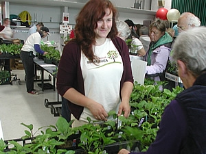 Spring plant sales kick off this weekend in Eastern Iowa