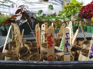 Wanted: Iowa gardeners