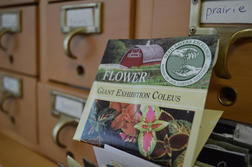 Seed Savers Exchange in Decorah is among the donors to the Ely Seed Lending Library. (photo/Cindy Hadish)