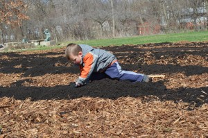 Six-year-old Brody Welsh of Cedar Rapids helps build a school garden at Harrison Elementary. This year's Eco-Fest celebration, in the New Bohemia neighborhood, will highlight what individuals can do to help the Earth. (photo/Cindy Hadish)