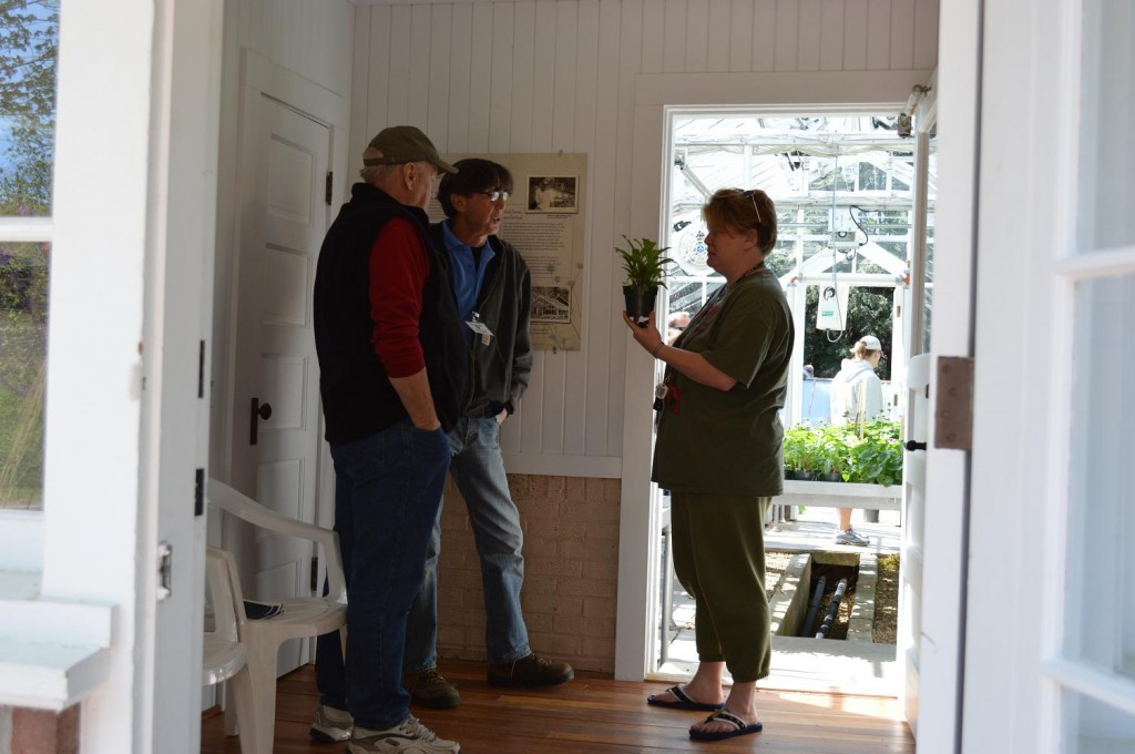 Brucemore head gardener, David Morton, (center) answers questions about a plant during the annual sale on Saturday, May 11, 2013. (photo/Cindy Hadish)
