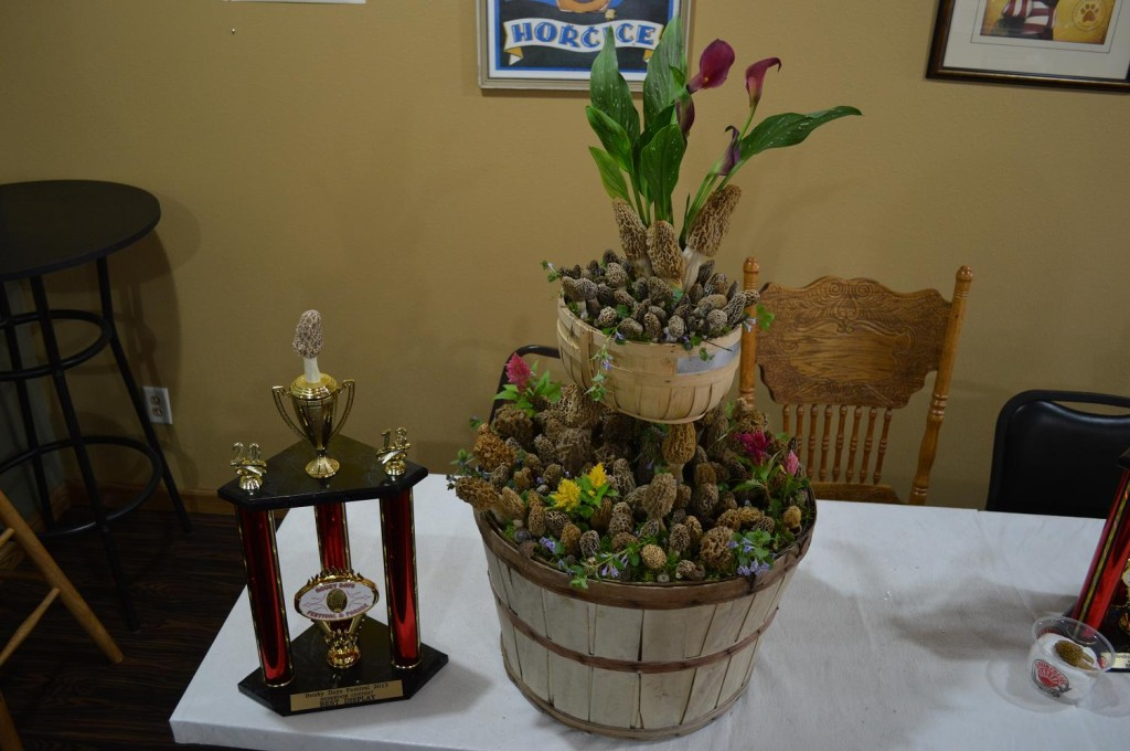 Dozens of morel mushrooms along with calla lillies and other flowers, combined to win the Best Display award Saturday, May 18, 2013, during the mushroom contest at Houby Days in Cedar Rapids, Iowa. (photo/Cindy Hadish)