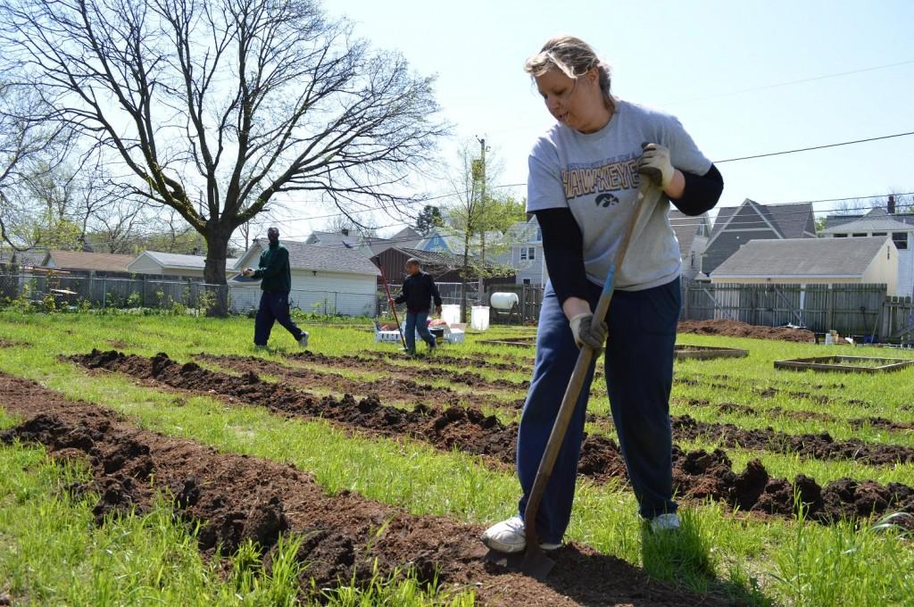 Brandi Stiffin of Cedar Rapids volunteers on Saturday, May 11, 2013, at the Bever Avenue community garden in southeast Cedar Rapids. (photo/Cindy Hadish)
