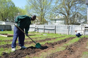 Karl Cassell shovels in a new community garden on Bever Avenue SE in the Wellington Heights Neighborhood of Cedar Rapids on Saturday, May 11, 2013. (photo/Cindy Hadish)