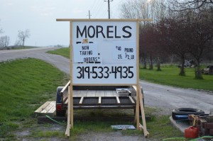 "Graham ""The Mushroom Man"" Kuethe and Denny Merz of rural Cedar Rapids take orders for morel mushrooms, as advertised in their sign along Highway 30. Graham predicts a bumper crop of morels this spring. (photo/Cindy Hadish)"