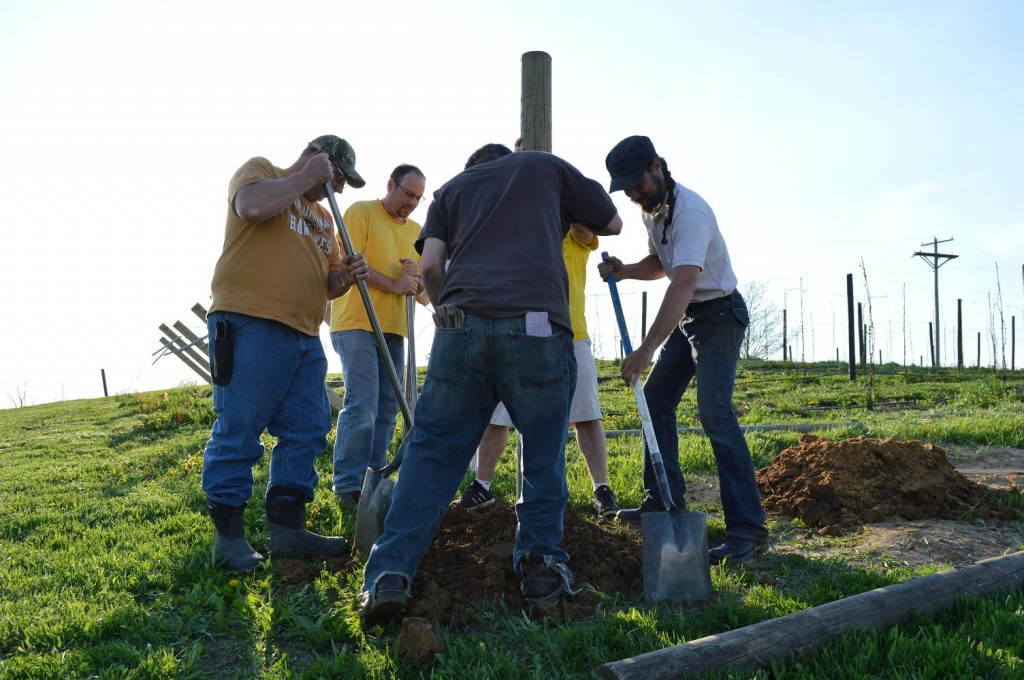Dirt is shoveled around each post and tamped down to hold the posts in place. (photo/Cindy Hadish)
