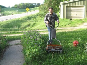 The author mows the lawn of his home in Stone City with a modern reel lawn mower. The Fiskars StaySharpe Max model is lightweight and has a wider height adjustment than most, but only cuts a 18-inch swath. (photo by Calvin DeWitte)