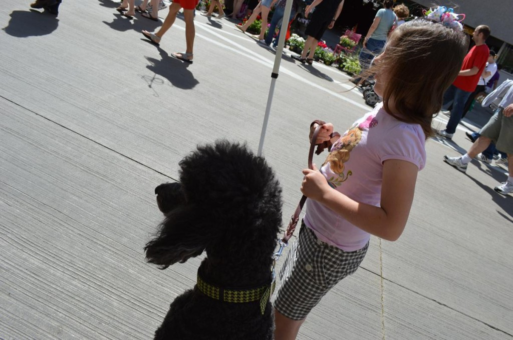 Emily McCoy watches the crowd pass with her dog, Chase, a standard poodle at the Downtown Farmers Market in Cedar Rapids. Both were helping promote K9COLA, including the upcoming grand opening of K9 Acres Dog Park at 10 a.m. June 8, at Squaw Creek Park in Marion. (photo/Cindy Hadish)