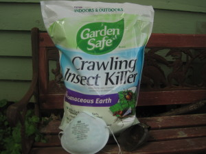 Diatomaceous earth vs. the ants