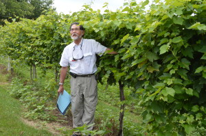 Iowa's only commercial vineyard in multi-state research study hosts grape growers during field day