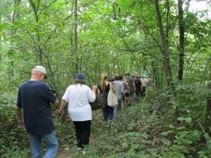 Tour an edible forest