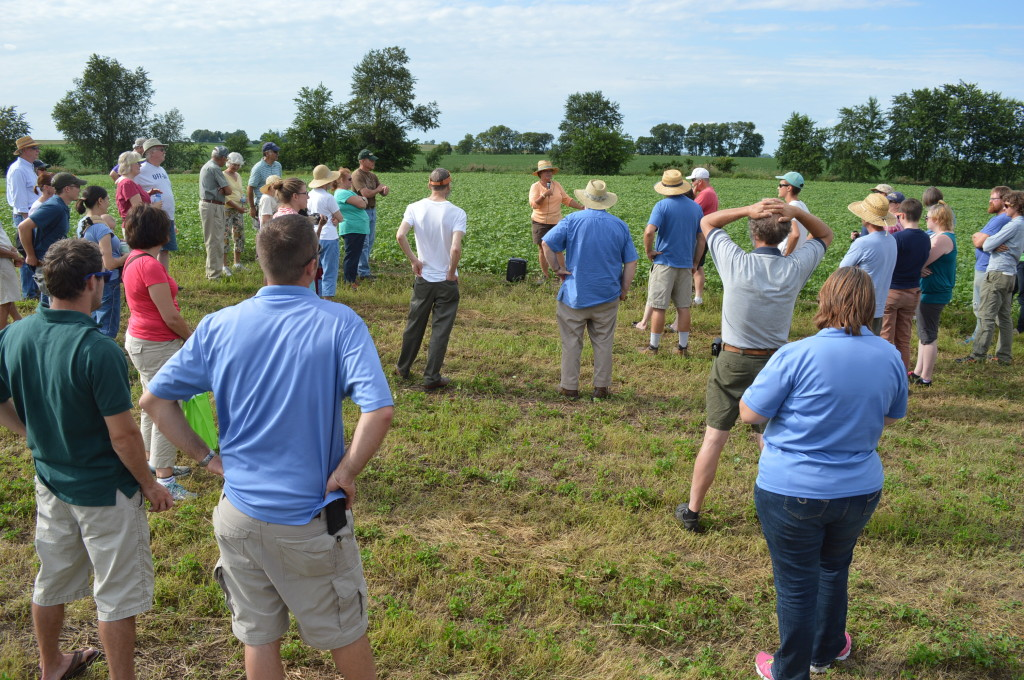 Visitors listen to farm owner Laura Krouse, as she discusses cover crops during the field day at Abbe Hills Farm. (photo/Cindy Hadih)