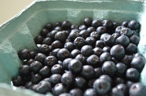 Salsa days and aronia berries