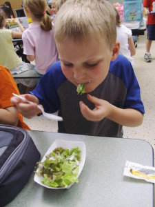 Iowa Valley RC&D strengthens connection between schools and local farmers