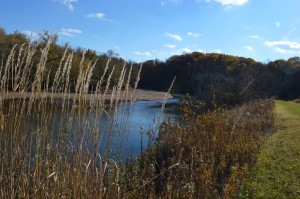 Experience the connection between healthy soil and clean water Nov. 9 in Iowa City