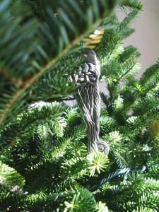 Where to find Iowa-grown Christmas trees this season
