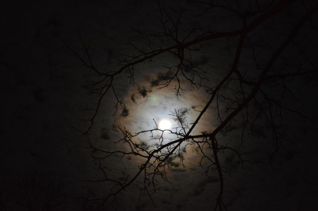Clouds covering a recent full moon. (photo/Cindy Hadish)