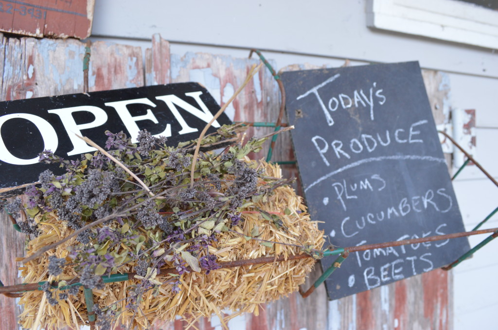 Locally grown plums and other fresh produce is offered for sale at Henry's Village Market in August 2013. (photo/Cindy Hadish)