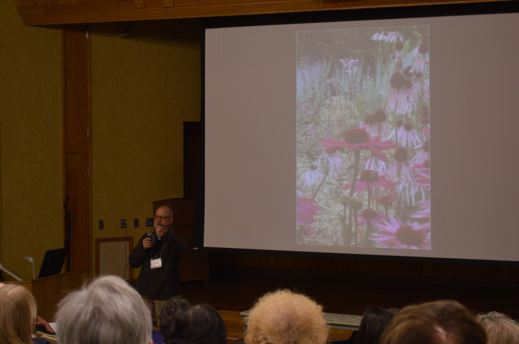 "Roy Diblik describes the ""know maintenance"" approach to perennials. He noted  that plants such as purple coneflower grow better in ""communities"" rather than being separated by wood mulch chips. (photo/Cindy Hadish)"