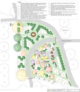 Preliminary design of Wetherby Park Food Forest/Backyard Abundance
