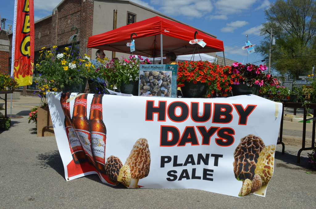A plant sale is a new feature during Houby Days 2014 in Czech Village in Cedar Rapids, Iowa. The three-day festival celebrates houby, the Czech word for mushrooms. (photo/Cindy Hadish)