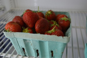 Strawberries sold at the market store this summer were brought in from another farm, after the Lacina family lost their strawberry patch to Japanese beetles. They are  trying to start a new strawberry patch. (photo/Cindy Hadish)