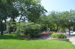 Some of the trees in Greene Square Park will be removed as part of renovation plans. (photo/Cindy Hadish)