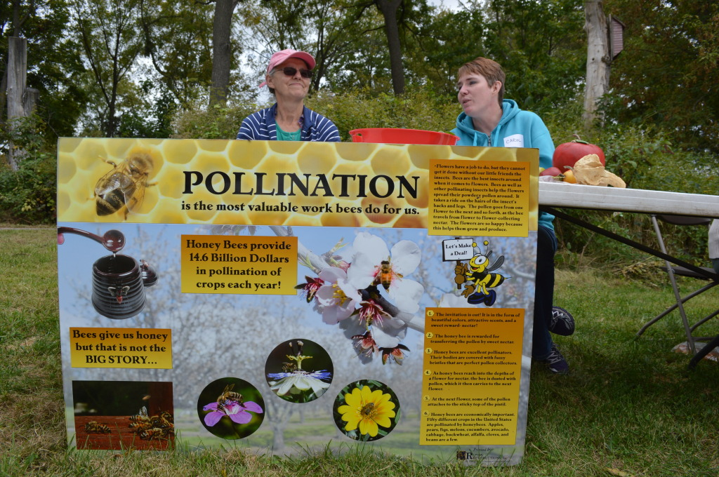 Education is a prime part of Honey Fest, with boards that explain the importance of bees. (photo/Cindy Hadish)