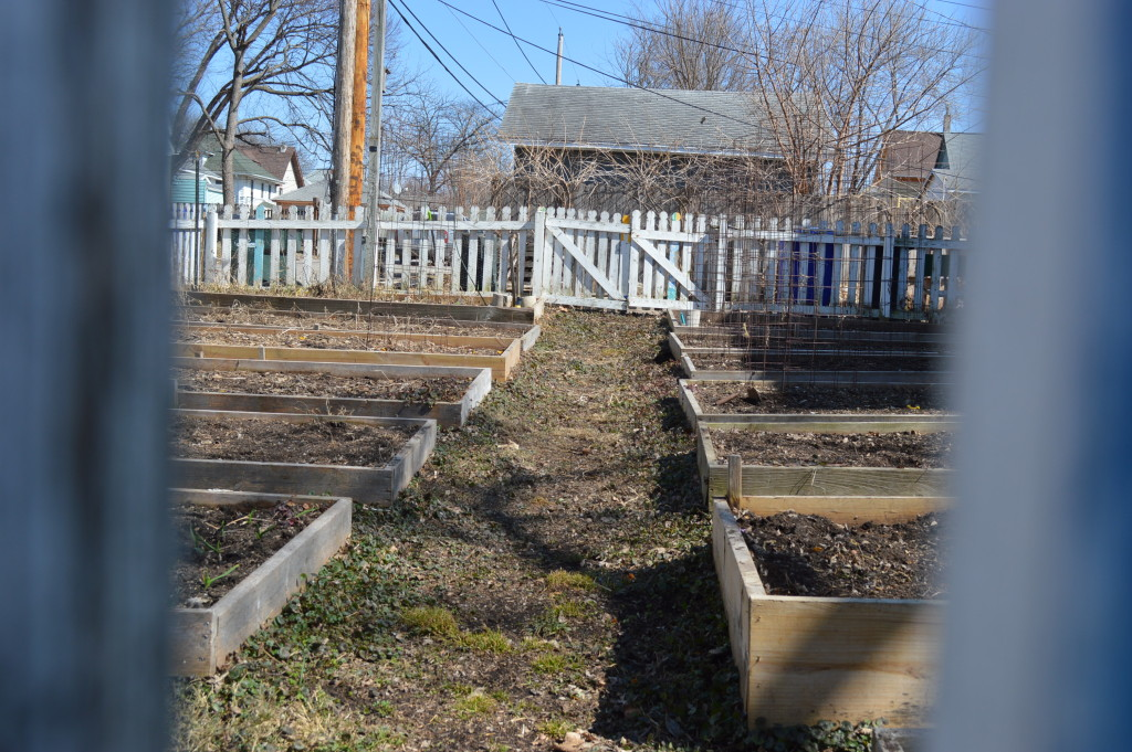 The 14 raised beds in the Wellington Heights Community Garden have been cleaned out for the upcoming growing season. (photo/Cindy Hadish)