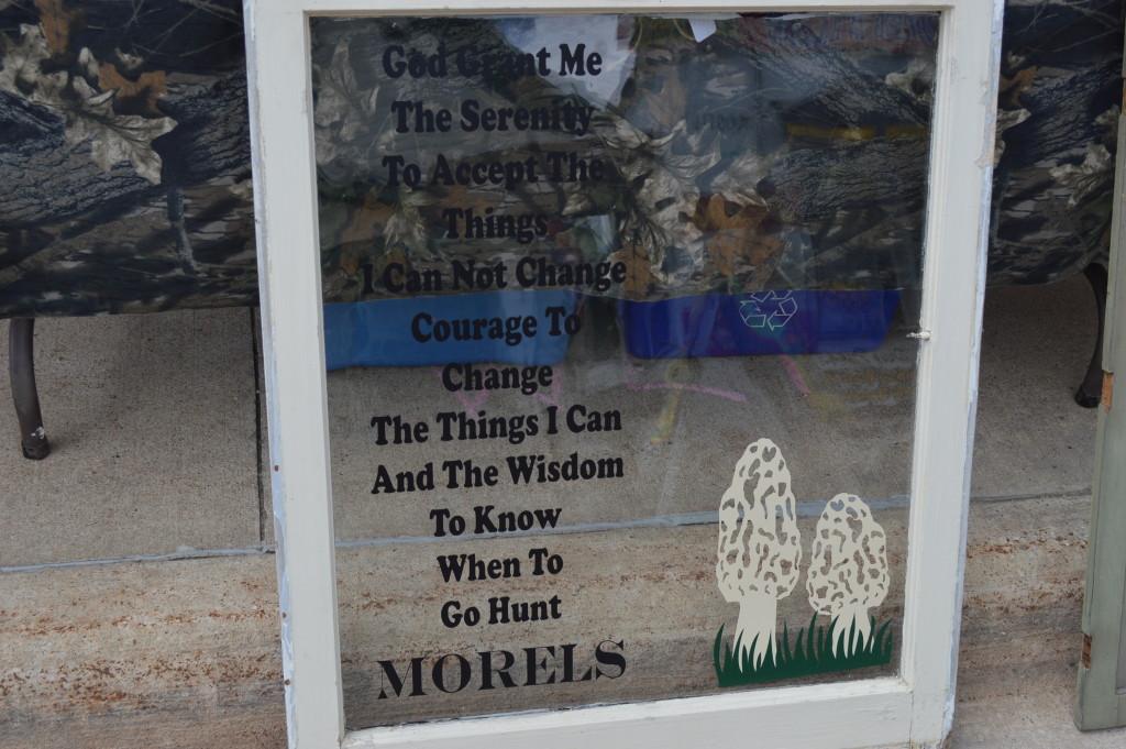 h morel sign