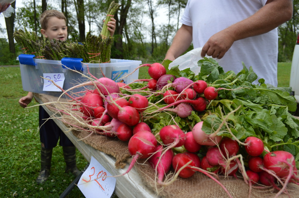 Customers found a nice selection of fresh produce during the inaugural Village Farmers Market on Saturday, June 13, 2015, in Czech Village. (photo/Cindy Hadish)