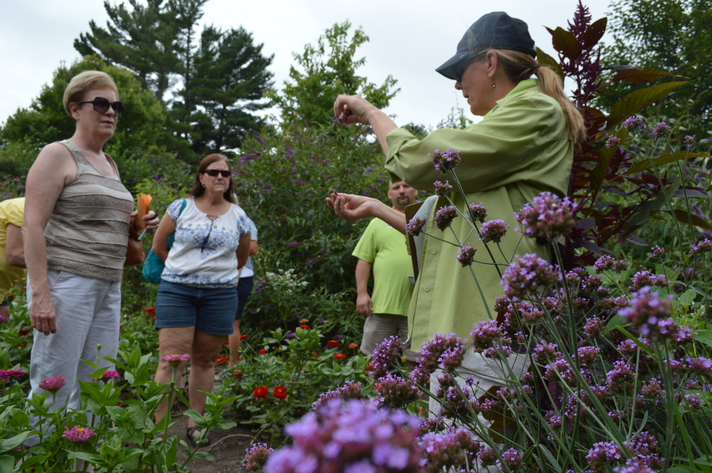 Linn County Master Gardener, Peggy Green, leads the seed-saving workshop during the 2015 Brucemore Garden & Art Show. (photo/Cindy Hadish)