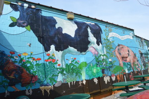 Thomas Agran also painted this mural on the New Pioneer Co-op building in Iowa City. (photo/Cindy Hadish)