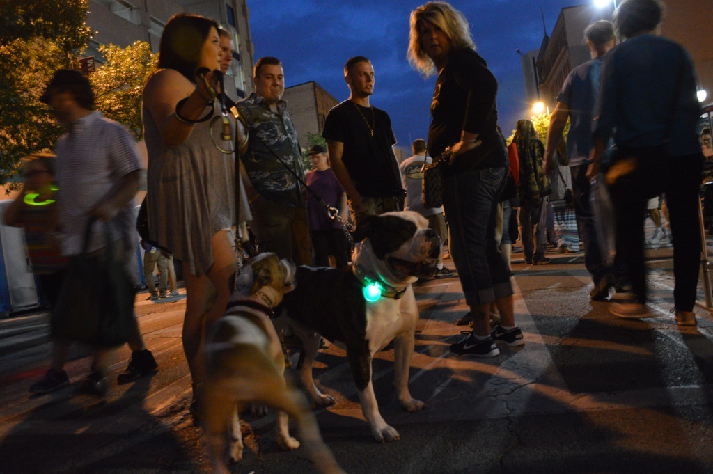 Even dogs got into the mood of Market After Dark with festive lights in downtown Cedar Rapids. (photo/Cindy Hadish)