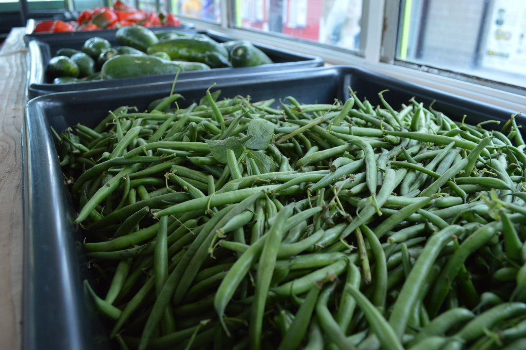 Green beans were among the produce offered for free inside the Feed Iowa First bus during the Five Seasons Stand Down on Friday, Sept. 4, 2015. (photo/Cindy Hadish)
