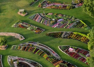 An aerial shot shows the Noelridge Park gardens in Cedar Rapids, Iowa, which took first place in the All-America Selections Landscape Design Contest. (photo/James Triplett)