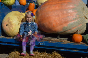 "The ""Caspers Pumpkin Patch"" from Anamosa was a popular spot during the final day of the season for the Hiawatha Farmers Market on Sunday, Oct. 25, 2015. Indoor markets begin in Eastern Iowa in November. (photo/Cindy Hadish)"