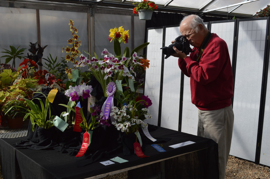Visitors to the Noelridge Greenhouse found plenty to photograph at the Eastern Iowa Orchid Show and Sale in Cedar Rapids. (photo/Cindy Hadish)