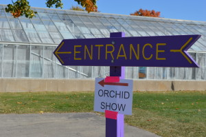 The Noelridge Greenhouse offers a warm respite during a cool October weekend with the Eastern Iowa Orchid Show & Sale. (photo/Cindy Hadish)