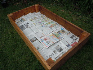 Steps 2 and 3: place chicken wire on the ground and add a layer of newspaper. (photo/Cindy Hadish)