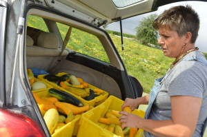 Sonia Kendrick loads squash into her car this summer. Kendrick works 50 hours per week for Feed Iowa First, but gets no compensation, as she continues to search for funding. (photo/Cindy Hadish)