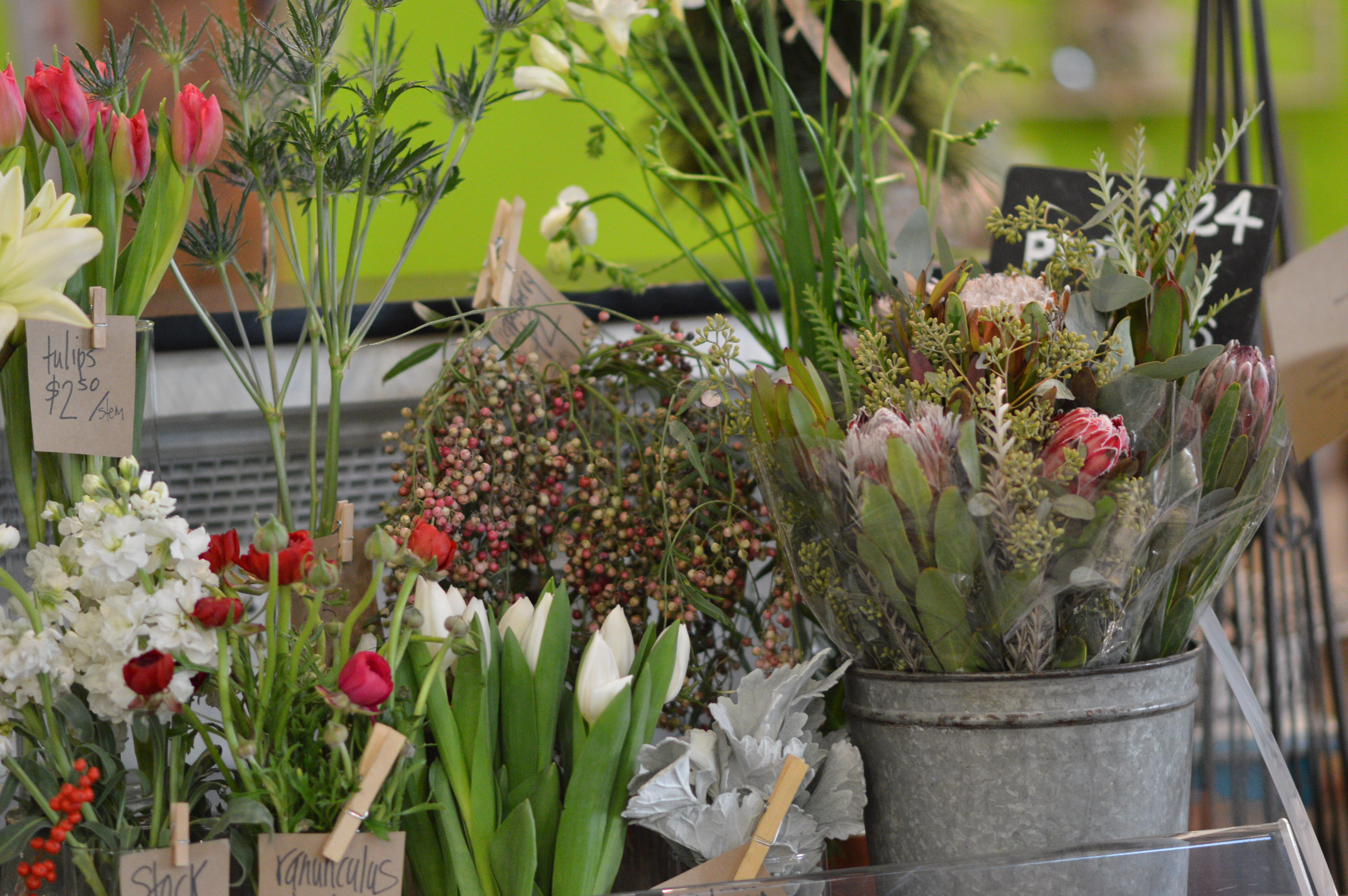 Flowers that bloom in winter months - Protea Bouquets Are Sold Alongside Tulips And Other Flowers During Winter Months At Bark Bloom