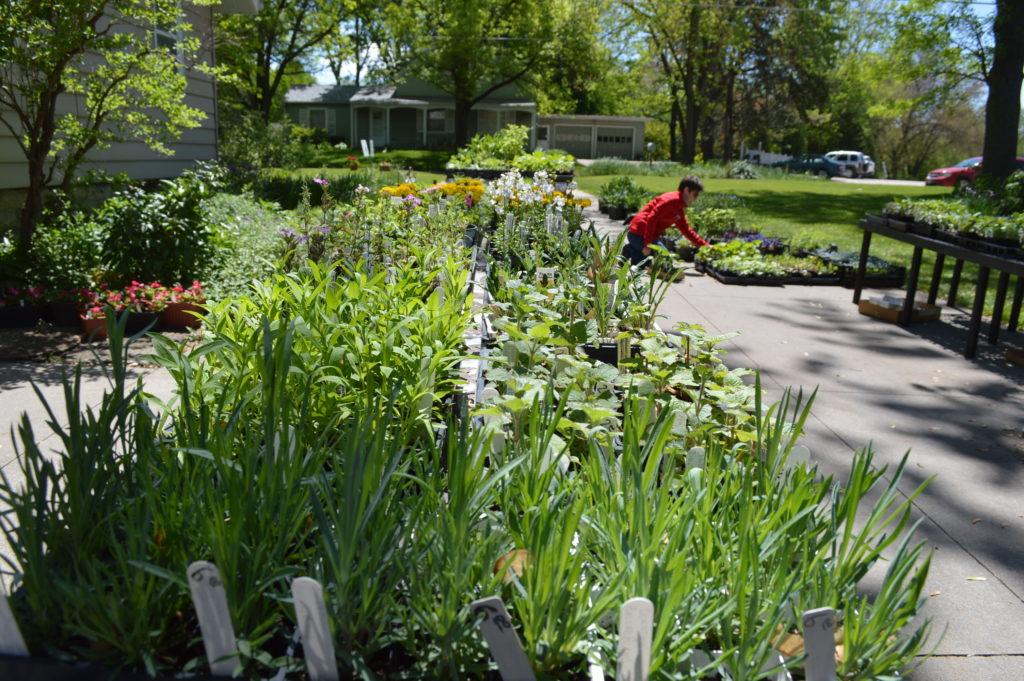 Spring plant sales offer taste of Iowa summer