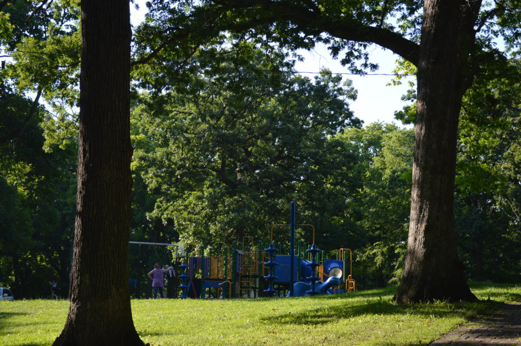 Mature trees shade the playground in Daniels Park on a hot day in June 2016 in northeast Cedar Rapids. (photo/Cindy Hadish)