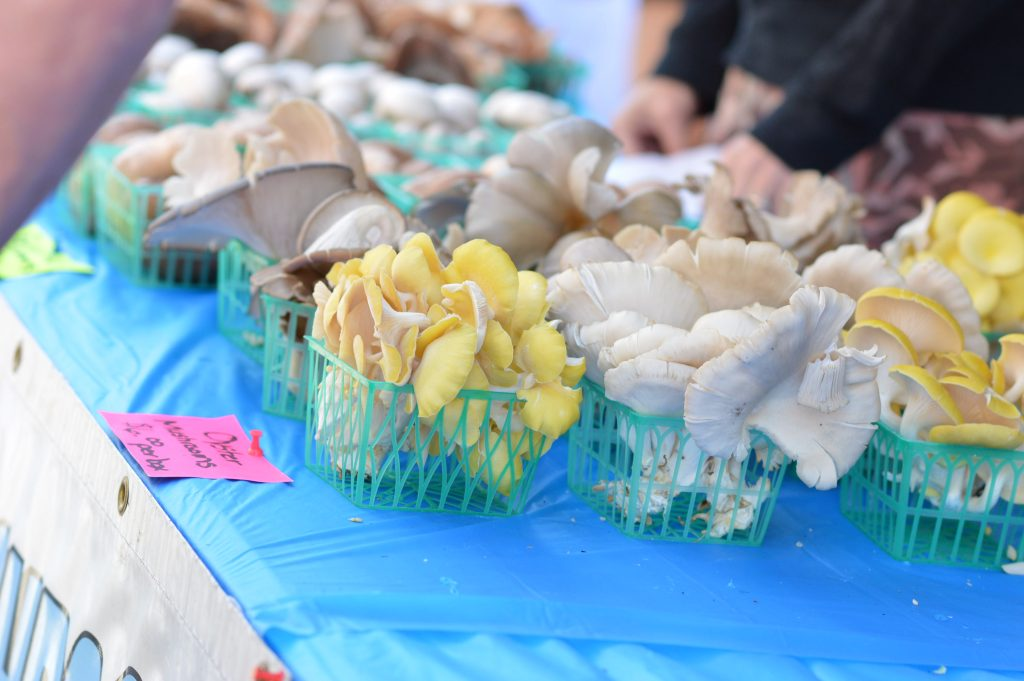Blues Best Mushrooms of Vinton, Iowa, sold a variety of mushrooms at the Downtown Farmers Market on Saturday, June 4, 2016. (photo/Cindy Hadish)