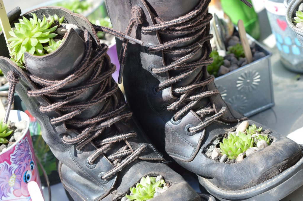 Boots planted with hen & chicks were among the items sold by Sharon French of Cedar Rapids at the Downtown Farmers Market. (photo/Cindy Hadish)