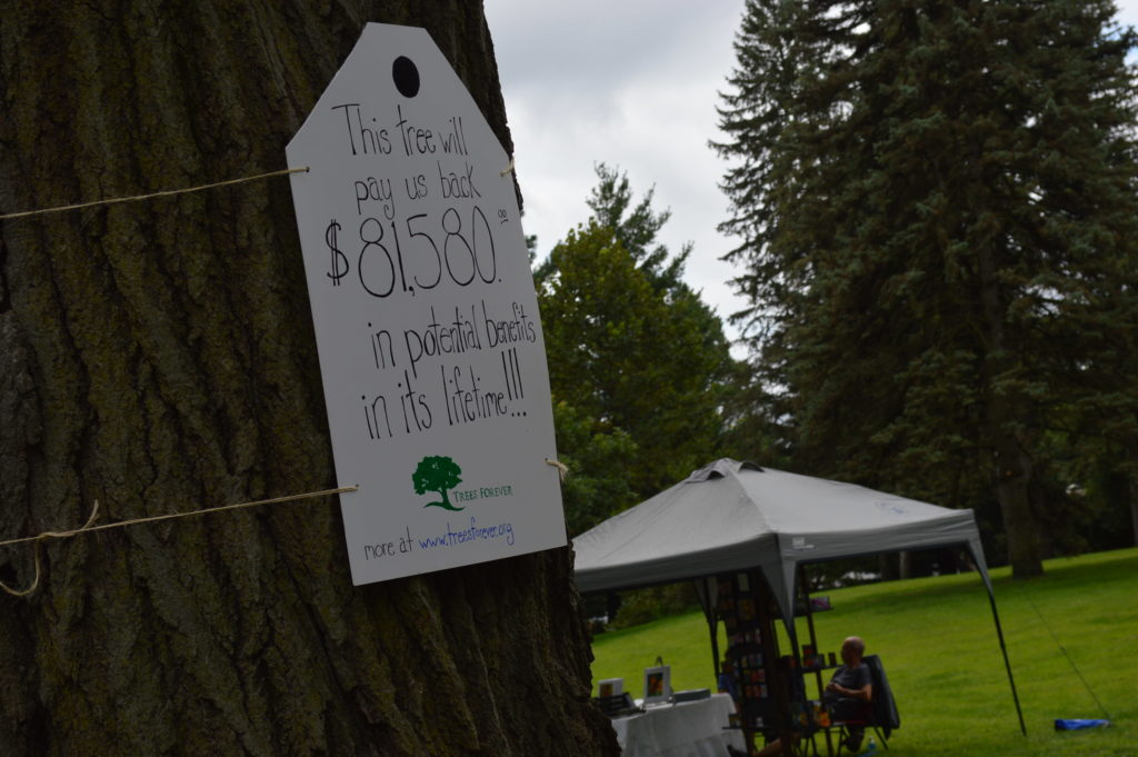 A Trees Forever sign noted the value of one of the mature trees on the Brucemore estate. (photo/Cindy Hadish)