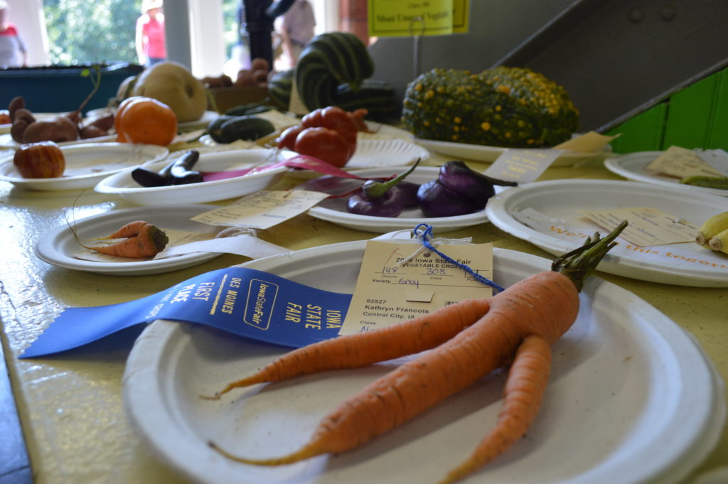 Unusual vegetables were among the categories in the Agriculture Building at the Iowa State Fair. (photo/Cindy Hadish)