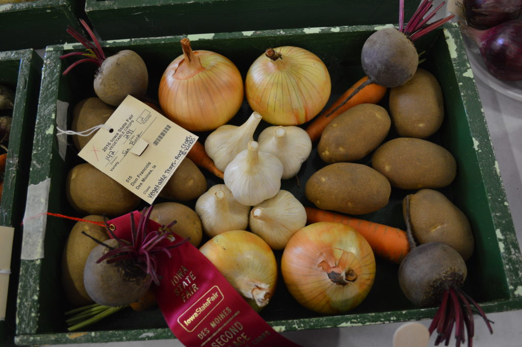 A box of vegetables received a second-place award at the Iowa State Fair. (photo/Cindy Hadish)